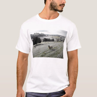 Sheep in a frosty valley T-Shirt