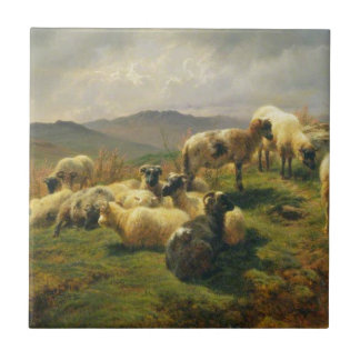 Sheep in the Highlands by Rosa Bonheur Tile