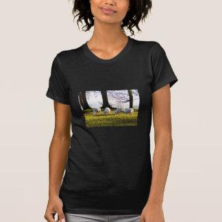 Sheep in the winter sun T-Shirt