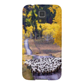 Sheep on Country Road Cases For Galaxy S5