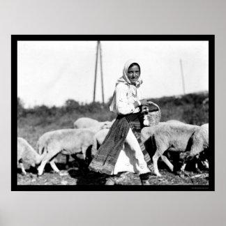Sheep Shepherdess in Bulgaria 1890 Poster