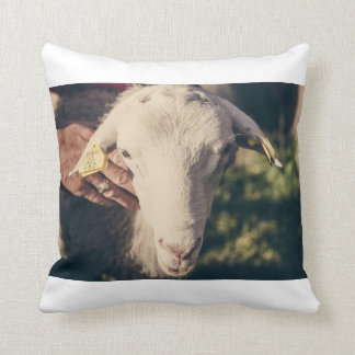 sheep - Vinciukas Cushion