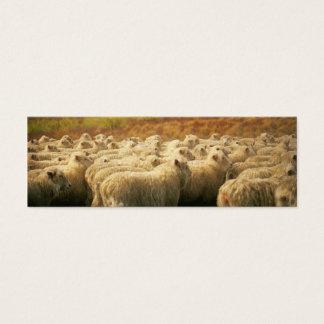 Sheep watercolour2 mini business card