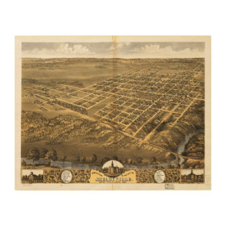 Shelbyville Shelby County Illinois (1869) Wood Print