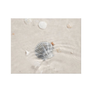 Shell and bubbles in water canvas print