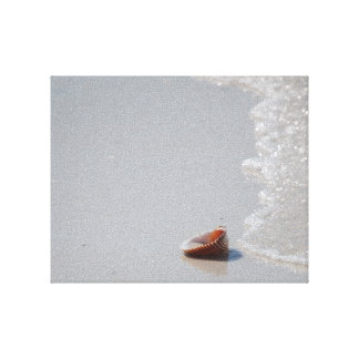 Shell in surf stretched canvas print