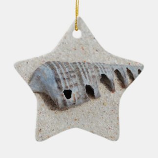 Shell on white sandy beach ceramic star decoration