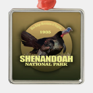 Shenandoah NP (Turkey) WT Silver-Colored Square Decoration