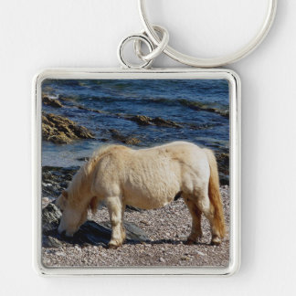shetland eating seaweed in remote Devon Silver-Colored Square Key Ring