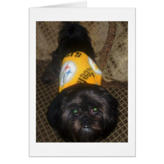 Shih Tzu Black and Gold, Black Dogs, cute Greeting Card