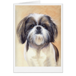 Shih Tzu Portrait Painted in Watercolour Card