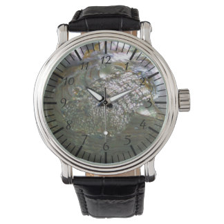 Shimmering Abalone Seashell, Beautiful Nature Watch