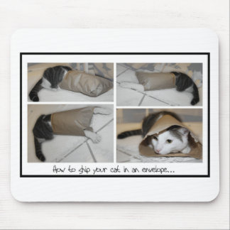 Ship a cat by mail funny cute cats print mouse pad