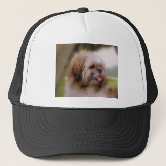Shitzu LUV Trucker Hat