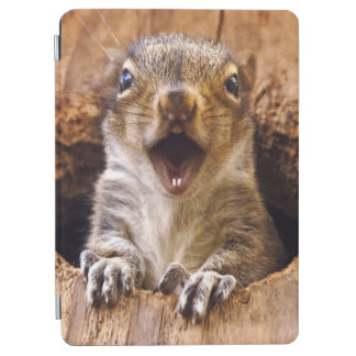 Shocked Squirrel iPad Air Cover