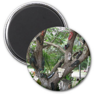 Shoe Tree Hawaii Magnets