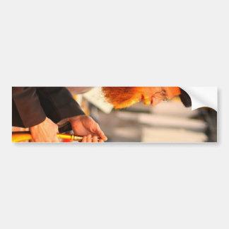 Shofar sound bumper sticker