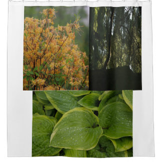 Shower Curtain with fall fowers and plants
