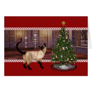 Siamese Cat - Season's Greetings Holiday Card