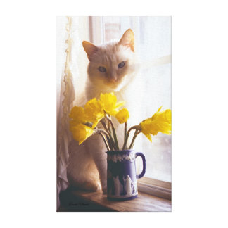 Siamese & Daffodils in Window Stretched Canvas Print