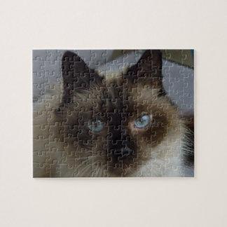 Siamese Kitty Puzzle