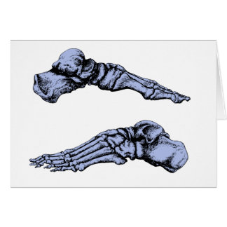 Side view of bones of the feet - deep blue card