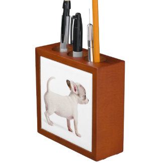 Side view of Chihuahua Puppy (10 weeks old) Desk Organiser