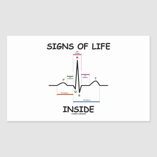 Signs Of Life Inside (ECG/EKG Electrocardiogram) Rectangle Stickers