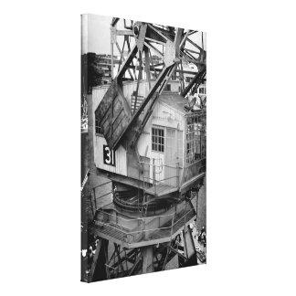 Silent Cranes Canvas Print