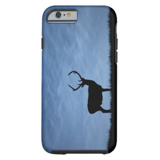 Silhouetted Red Deer Stag at Night Tough iPhone 6 Case
