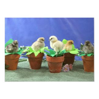 Silkie Chicks in Bloom Card