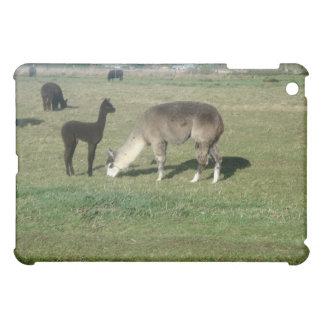 Silver alpaca and her cria iPad mini case