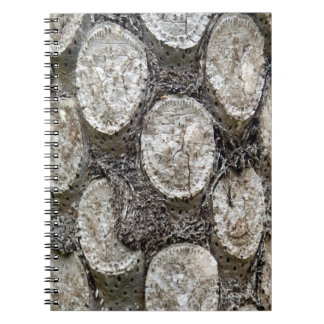 Silver Fern Tree Photo Notebook