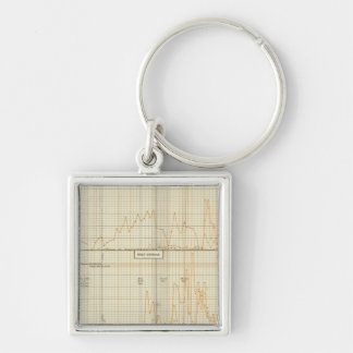 Silver, gold, minor coinage Silver-Colored square key ring