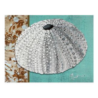 Silver Sea Urchin Postcard
