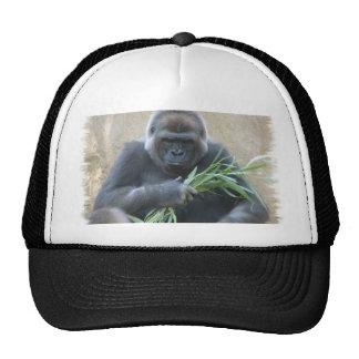 Silverback Gorilla Baseball Hat