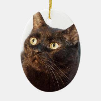 Simon Christmas Ornament