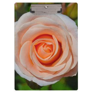 Single pink rose clipboard