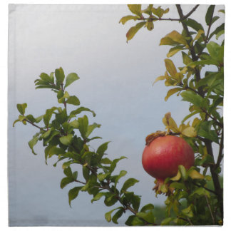 Single red pomegranate fruit on the tree in leaves napkin