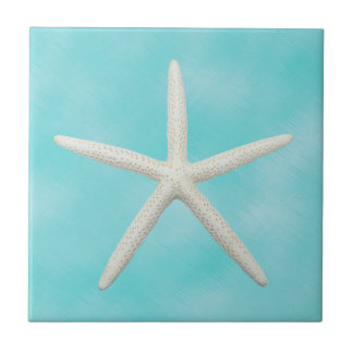 Single Starfish on Aqua Blue Tile