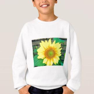 Single Vibrant Sunflower Sweatshirt