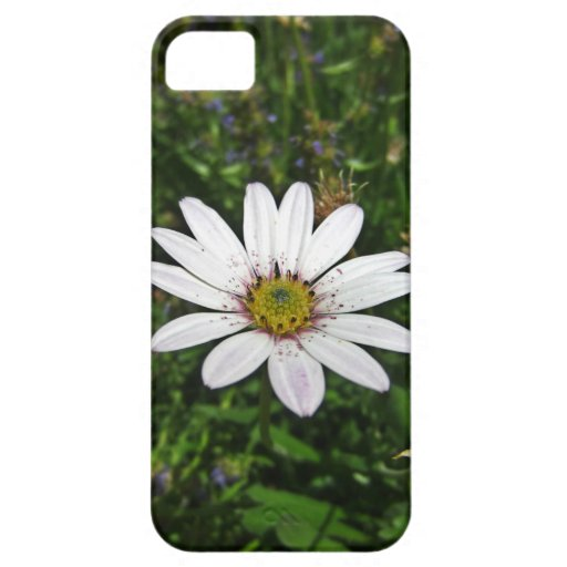 Single Wildflower 'Barely There' Case: iPhone 5/5S iPhone 5 Case