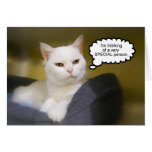Sister White Cat Birthday Humour Card