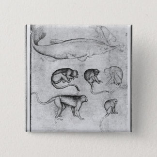 Six Monkeys and a Sturgeon 15 Cm Square Badge