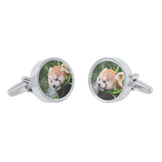 sketchy red panda silver finish cufflinks