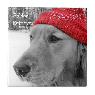 Ski Dog Golden Retriever Tile