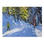 Skiing through the Woods La Clusaz 2012 Postcard