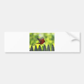 Skipping-Pickets.jpg Bumper Sticker