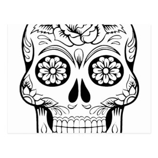 Skull drawing with black ink in white background postcard