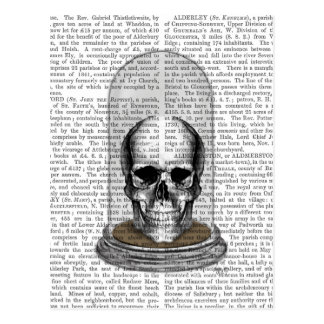 Skull In Bell Jar 2 Postcard